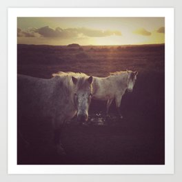 Wild Horses at Sunset Art Print
