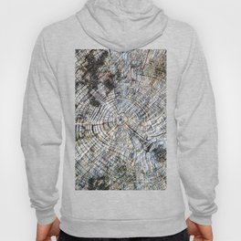 Old Tree Rings Hoody