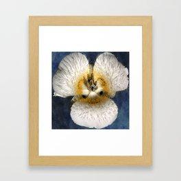 Mariposa Lily 2 Framed Art Print