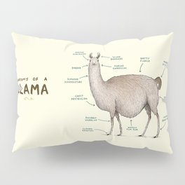 Anatomy of a Llama Pillow Sham