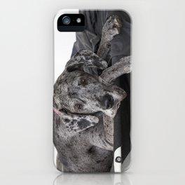 Great Dane waiting iPhone Case