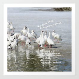 Les Oies Blanches : Si On Chantait - The White Geese : If We Sing Art Print
