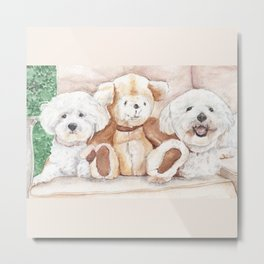 Two Bichons and A Friend Metal Print