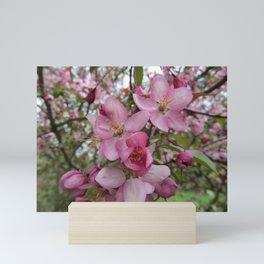 Pink Spring Blossom Mini Art Print