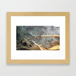 lizzards Framed Art Print