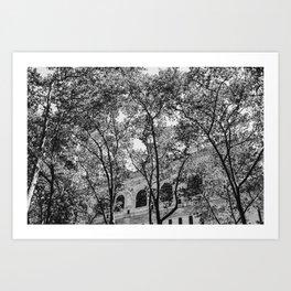 New York Library II Art Print
