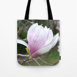 Soft Magnolia Days Tote Bag