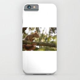 The hypnotized squirrel iPhone Case