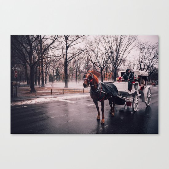 NYC Horse and Carriage Canvas Print