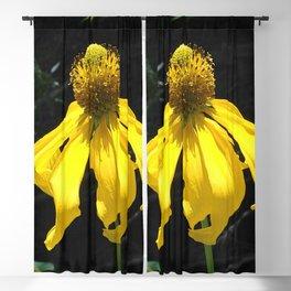 Watercolor Flower Tall Coneflower 01, Summer Sunshine Blackout Curtain