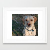 charlie Framed Art Prints featuring charlie by Tiffany Davis Kornacki