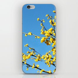 boom boom bloom iPhone Skin