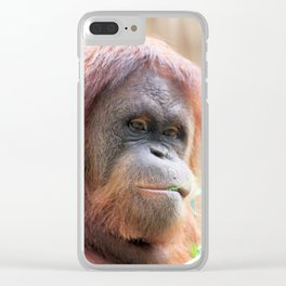 Orang 519-2 Clear iPhone Case
