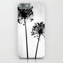 Dandelion Black and White Botanical Photo iPhone Case