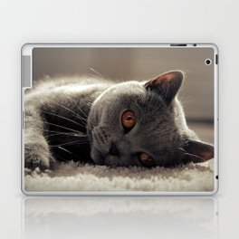 Dieslchen Laptop & iPad Skin
