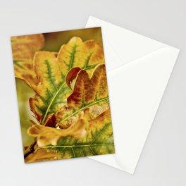 Oaki Stationery Cards