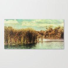 River Ant 97 Canvas Print