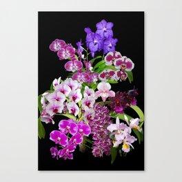 Orchids - Cool colors! Canvas Print