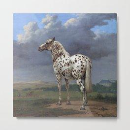 The horse blanc noir  Metal Print