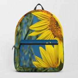 Sunflower-6 Backpack