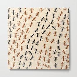 Ants Metal Print