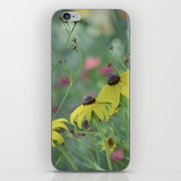 Daisy Delight iPhone Skin