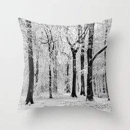 Snowy Beech Trees Throw Pillow
