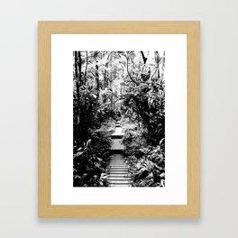 Pipiwai Trail Framed Art Print