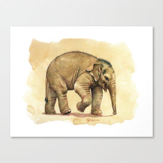Baby elephant A081 Canvas Print
