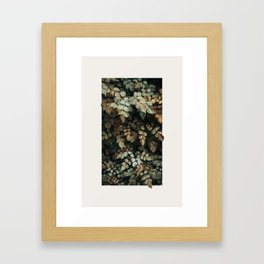 Growth (Autumn) Framed Art Print