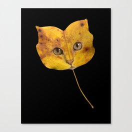 Autumn Cat-1 Canvas Print