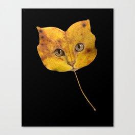 Autumn Cat-1 Canvas Print