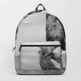 Wild Horses - Ocracoke Island, Hatteras, North Carolina black and white photograph / art photography Backpack