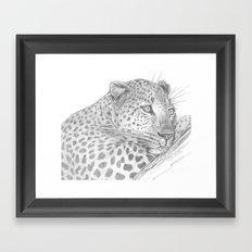 Leopard in a Tree Framed Art Print