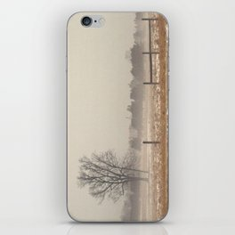 Winter Landscape iPhone Skin