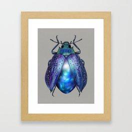 Black Opal Beetle Framed Art Print
