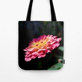Dahlia flower in full bloom Tote Bag