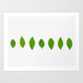 Brisk Bright Leaves Art Print