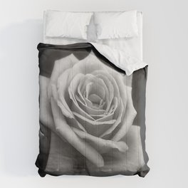 Pink Roses in Anzures 4 B&W Comforters