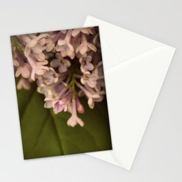 Your Love Stationery Cards