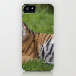Amazingly Awesome Grown Tiger Relaxing On Meadow Close Up Ultra HD iPhone Case