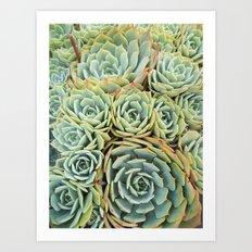Succulentville Art Print