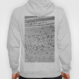 The Birds (Black and White) Hoody