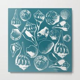 Marco Island Shells Metal Print