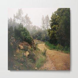 (follow the path) Metal Print