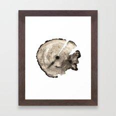 cross-section II Framed Art Print