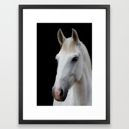 White Horse 9012 Framed Art Print