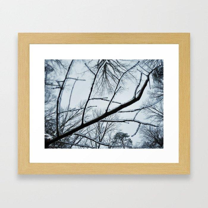 Little Ice Tree Framed Art Print