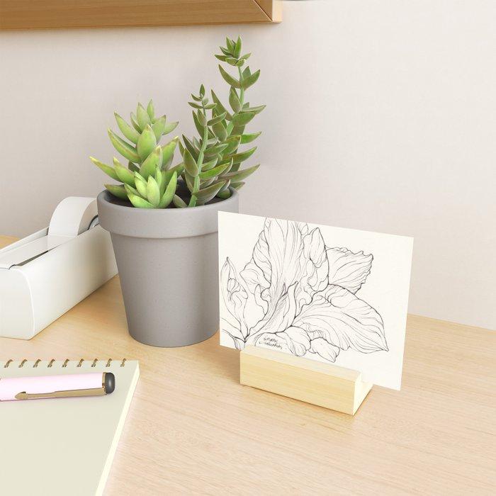 Amaryllis Ink Illustration Mini Art Print