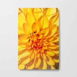 Yellow Macro Flower Metal Print
